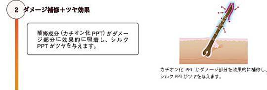 「クレイエステ レシュティブ」ダメージ補修+ツヤ効果(イメージ図)